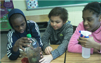 DIY Terrariums Reinforce Science Lesson photo